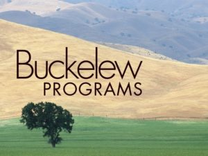 This is a logo for Buckelew programs